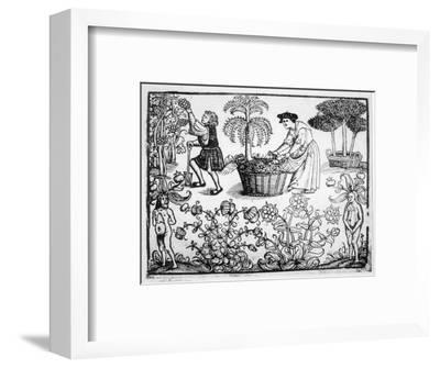 Flowers Vines Shrubs and Mandrakes in a Medieval Herb Garden--Framed Giclee Print
