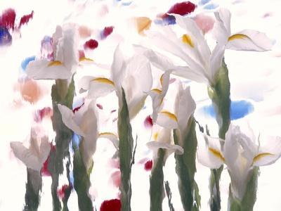 https://imgc.artprintimages.com/img/print/flowers_u-l-pyk8ur0.jpg?p=0