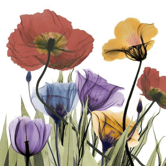 Flowerscape-Albert Koetsier-Art Print