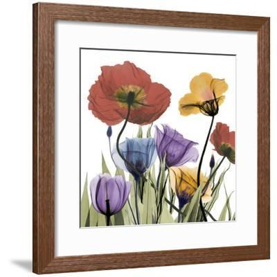 Flowerscape-Albert Koetsier-Framed Art Print
