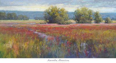 Flowing Thru Crimson-Amanda Houston-Art Print