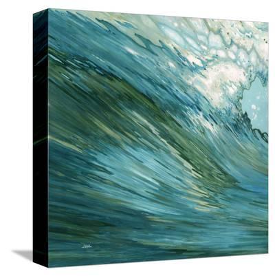 Fluid Motion-Margaret Juul-Stretched Canvas Print