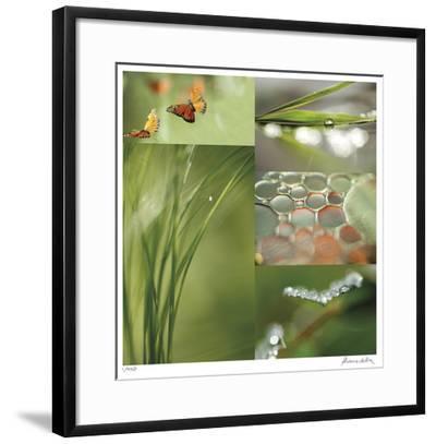 Fluttering Spring-Florence Delva-Framed Giclee Print