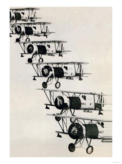 Flying in Formation--Art Print