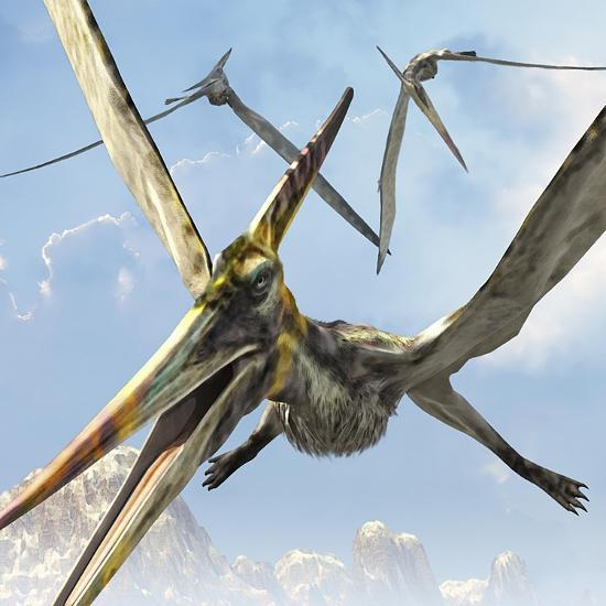 Flying Pterodactyls Searching for Food-Stocktrek Images-Art Print