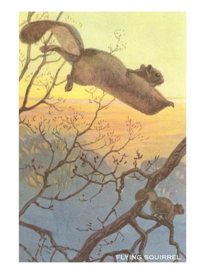 Flying Squirrel--Art Print