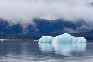 Melting Iceberg in Mendenhall Lake by fmcginn