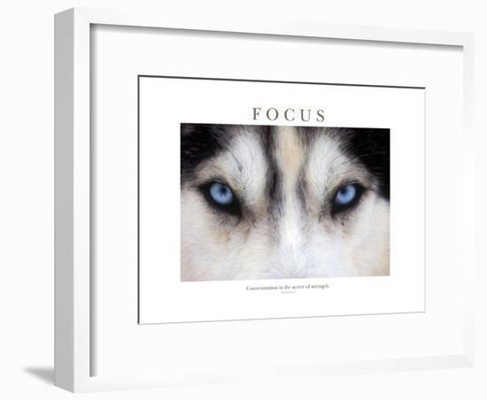 Focus - Concentration Is The Secret Of Strength-Brian Horisk-Framed Photographic Print