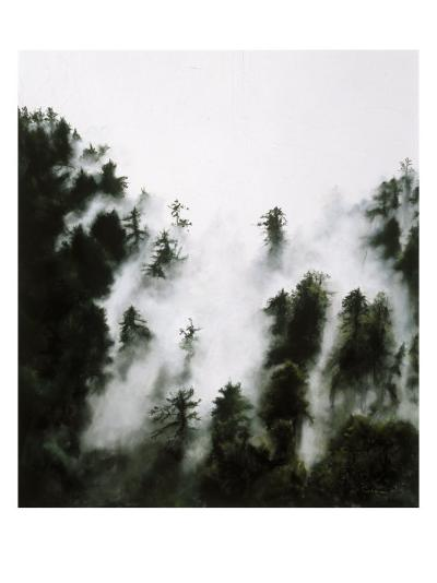 Fog and Redwoods-Jill Tishman-Premium Giclee Print