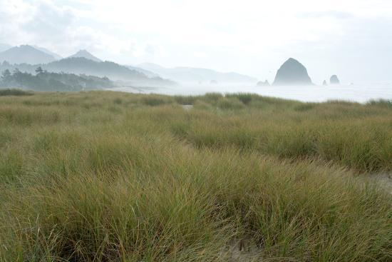 Fog at Cannon Beach, Oregon-Vickie Lewis-Photographic Print