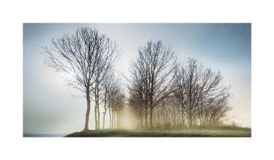 Fog Bank-Paolo De Faveri-Giclee Print