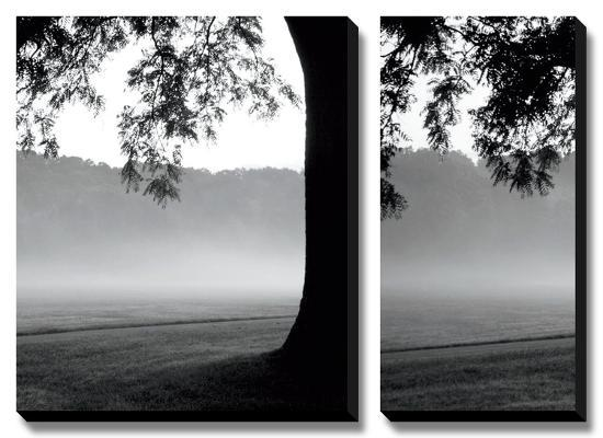 Fog in the Park I-Gary Bydlo-Canvas Art Set