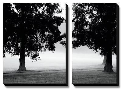 Fog in the Park II-Gary Bydlo-Canvas Art Set