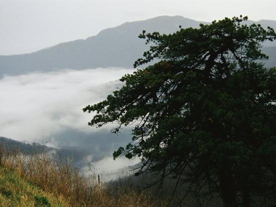 Fog in Valley Below Old Rag Mountain-Raymond Gehman-Photographic Print