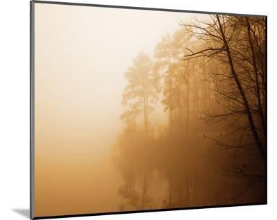 Fog on Shelly Lake I-Alan Hausenflock-Mounted Print