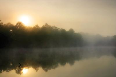 Fog on the Mattaponi 3-Alan Hausenflock-Photographic Print