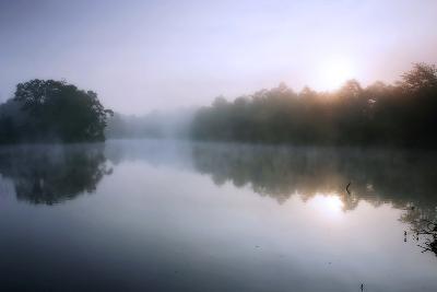 Fog on the Mattaponi 8-Alan Hausenflock-Photographic Print