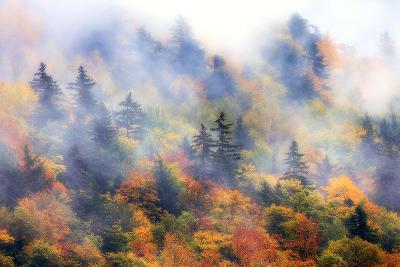 Fog over a Forested Hillside in New England Fall Colors-Robbie George-Photographic Print