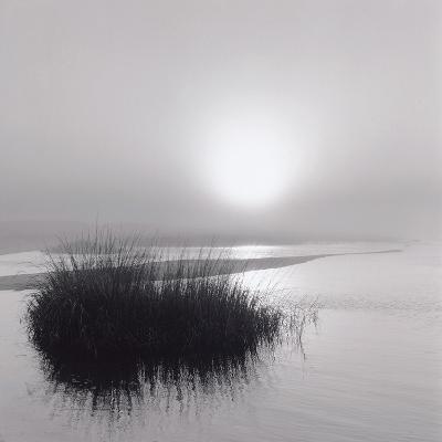 Fog over Katama-Michael Kahn-Giclee Print