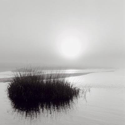 Fog over Katama-Michael Kahn-Art Print