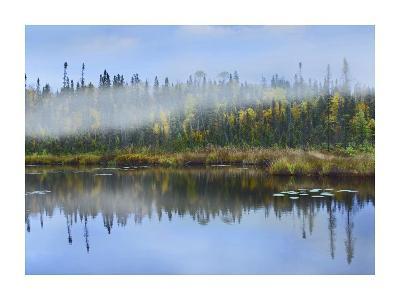 Fog over lake, Ontario, Canada-Tim Fitzharris-Art Print