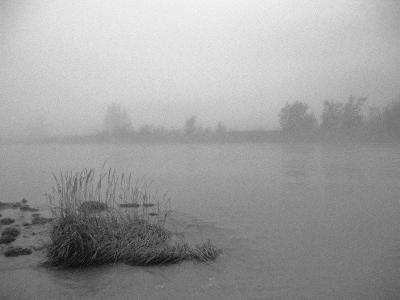 Fog over Taiya River Near Dyea Alaska Se Summer Bandw-Design Pics Inc-Photographic Print