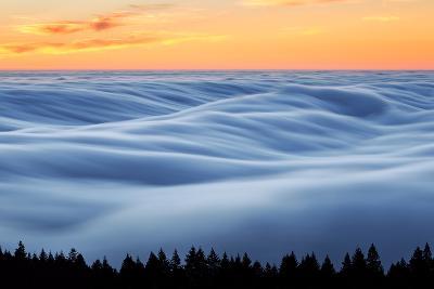 Fog Stream at Sunset, Mount Tam, Pacific Ocaen, San Francisco-Vincent James-Photographic Print