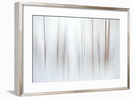 Fog-Ursula Abresch-Framed Premium Photographic Print