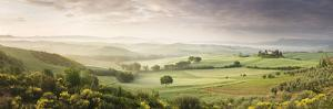 Foggy Field, Villa Belvedere, San Quirico D'Orcia, Val D'Orcia, Siena Province, Tuscany, Italy
