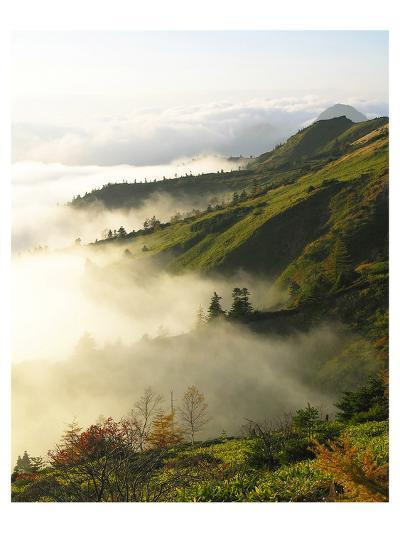 Foggy Japanese Valley in Fall--Art Print