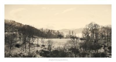 Foggy Mountain II-Alicia Ludwig-Giclee Print