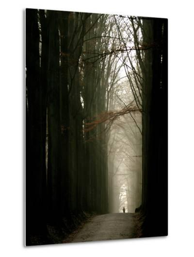 Foggy Path with Trees-Guillaume Carels-Metal Print