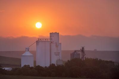 Foggy Sunrise over Grain Elevator, Farm, Kathryn, North Dakota, USA-Chuck Haney-Photographic Print