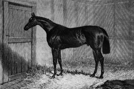 'Foig-A-Ballagh', c1841-1860, (1911)-Unknown-Giclee Print