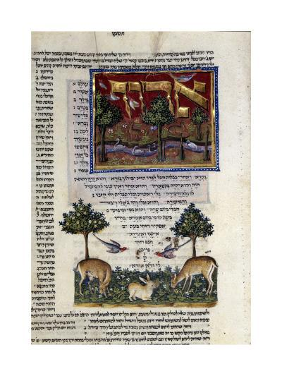 Fol.80 from 'The Rothschild Miscellany', Northern Italy, C.1450-80--Giclee Print
