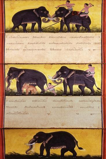 Folio from a Manuscript on Elephant Training--Giclee Print