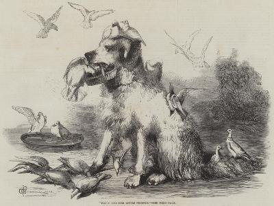 Folly and Her Little Friends--Giclee Print