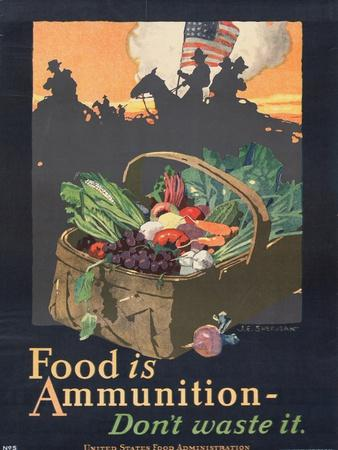 https://imgc.artprintimages.com/img/print/food-is-ammunition-don-t-waste-it-1918_u-l-pdocry0.jpg?p=0
