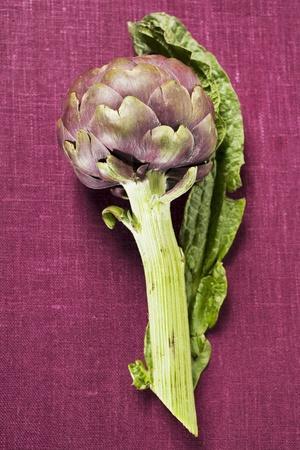 Artichoke with Leaf on Purple Background