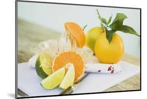 Limes, Clementine, Oranges and Citrus Squeezer by Foodcollection