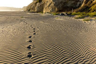 Foot Prints in the Sand Patterns on the Beach, Cape Blanco Sp, Oregon-Chuck Haney-Photographic Print
