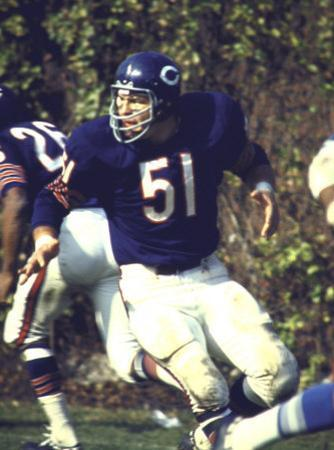 Football: Chicago Bears Dick Butkus No.51 in Action Vs Detroit Lions