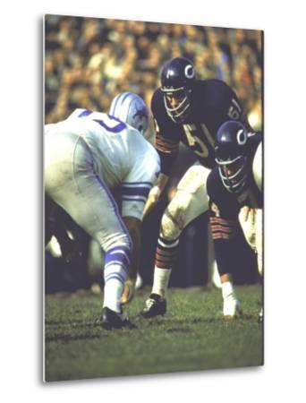 Football: Chicago Bears Dick Butkus No.51At Line of Scrimmage During Game Vs Detroit Lions