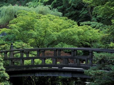 https://imgc.artprintimages.com/img/print/footbridge-in-japanese-garden-portland-oregon-usa_u-l-p3weiv0.jpg?p=0