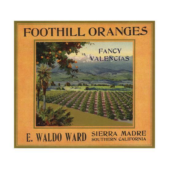 Foothill Oranges Brand - Sierra Madre, California - Citrus Crate Label-Lantern Press-Art Print