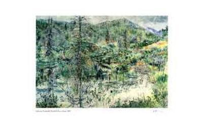 Foothills Beaver Dam-Catherine Perehudoff-Limited Edition