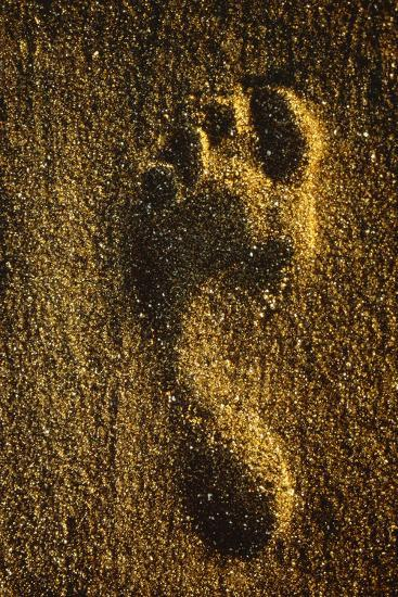 Footprint In Sand-Brad Lewis-Photographic Print