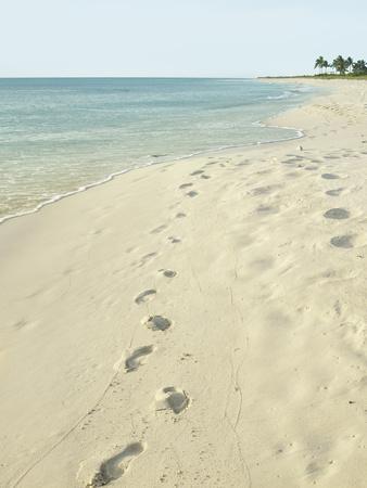 https://imgc.artprintimages.com/img/print/footprints-in-sand-at-grace-bay-beach-providenciales-turks-and-caicos-islands-west-indies_u-l-pheazj0.jpg?p=0