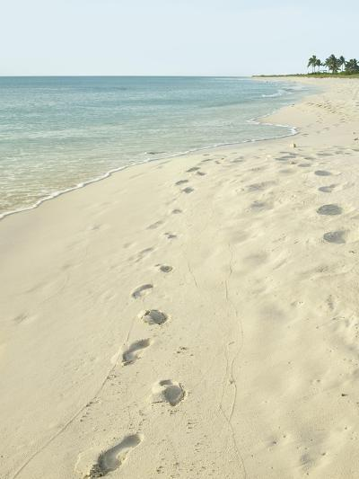 Footprints in Sand at Grace Bay Beach, Providenciales, Turks and Caicos Islands, West Indies-Kim Walker-Photographic Print