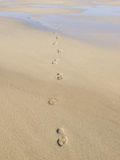 Footprints In Sand-Adrian Bicker-Photographic Print
